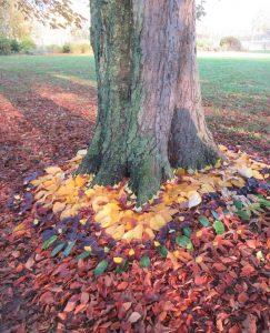 Tree Art Work